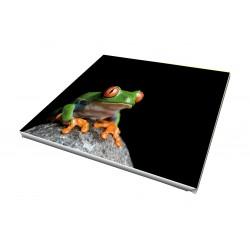 Toile imprimée carré 110 x 110 cm