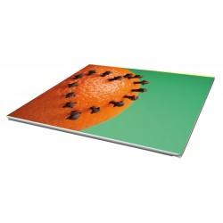 Toile imprimée paysage 100 x 70 cm