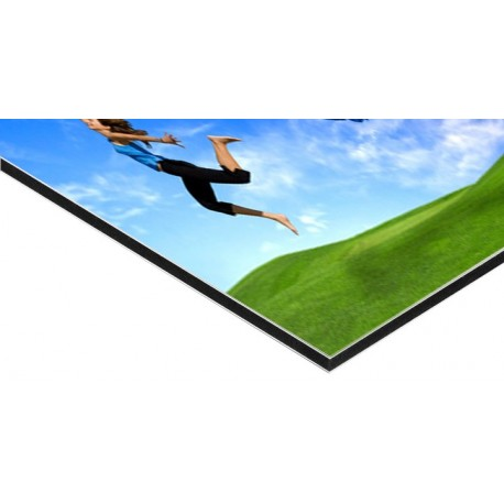 panneau alu dibond 300 x 400 cm 1 ex. Black Bedroom Furniture Sets. Home Design Ideas