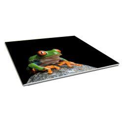 Toile imprimée paysage 100 x 50 cm - 4 ex