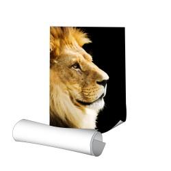 Affiche 30 x 120 cm - papier 150 g demi-mat - 80 ex
