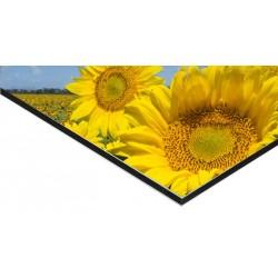 Panneau Alu Dibond 40 x 20 cm