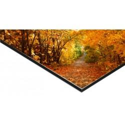 Panneau Alu Dibond 80 x 80 cm