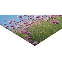 Panneau verre acrylique 105 x 70 cm
