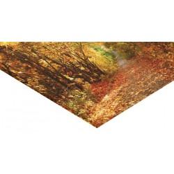Panneau verre acrylique 120 x 60 cm