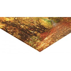 Panneau verre acrylique 80 x 150 cm - 15 ex