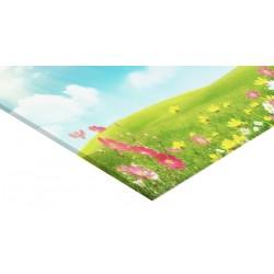Panneau verre acrylique 100 x 75 cm