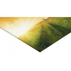Panneau verre acrylique 150 x 100 cm