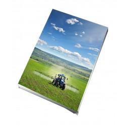 Toile imprimée portrait 30 x 45 cm